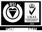 bsi-logo-light